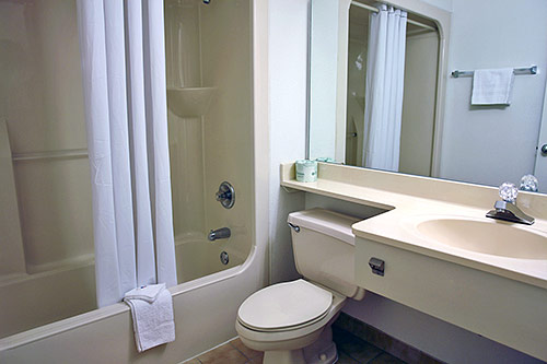 1 cause of illness and infection lack of proper hygiene the health coach for What do hotels use to clean bathrooms