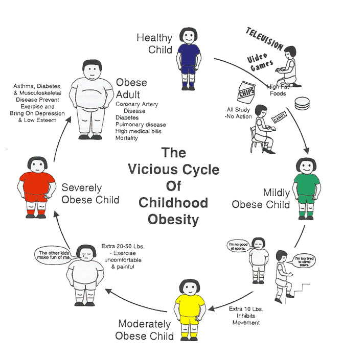 obesity how to overcome and maintain your perfect weight the  emotional armoring