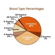 A MUST READ If You Have Rh-Negative Blood | Radiant Living